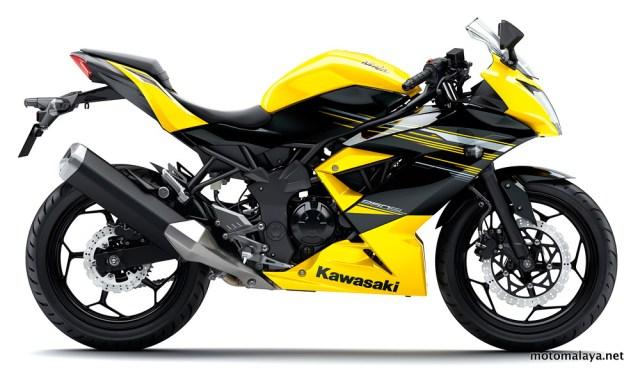 2014-KawasakiNinja250SL-Yellow-002