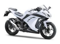 2013-Ninja250FI-Pearl-Stardust-White-1