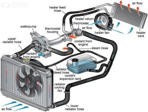 Engine ponents  Cooling System parts