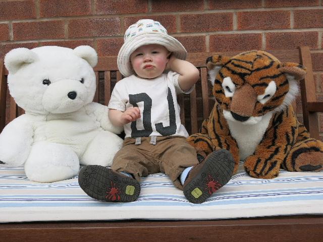 Bear, Daniel & Tiger