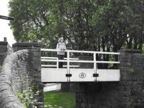 YorkshireTB (191)