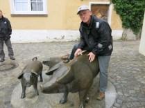 Pig work