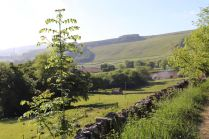 Derbyshire (24)
