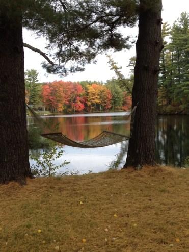 Reflective view and hammock
