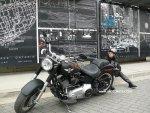 Fat Boy Lo Harley-Davidson on MOTORESS