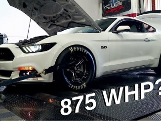 Whipple 2015 Mustang GT Dyno