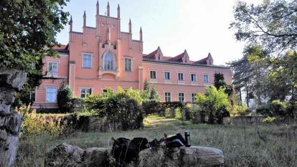 Parkansicht Wasserschloss Gusow bei Seelow, Landkreis Märkisch-Oderland in Brandenburg mit Picknick auf einem umgestürzten Baumstamm