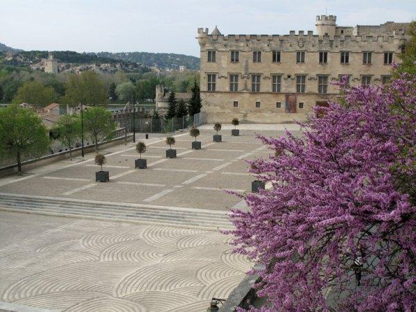 Papstpalast von Avignon mit einem lila blühenden Busch im Vordergrundund einem weiten gepflasterten Vorplatz