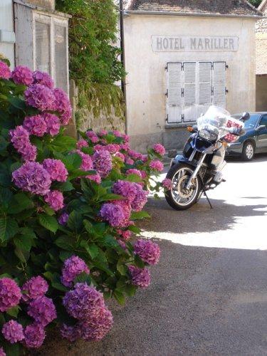 Motorrad mit Rhododendren in Varennes in Burgund