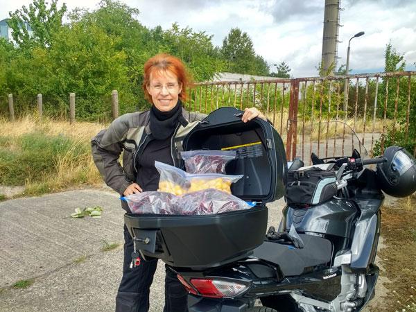 Mirabellenernte in Brandenburg mit einer rothaarigen Motorradfahrerin und einer Yamaha FJR 1300