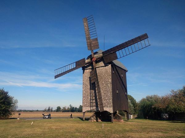 Bockwindmühle Wilhelmsaue im Oderbruchin Brandenburg