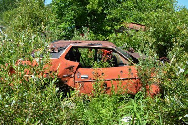 En este Mustang definitivamente mataron o trataron de matar a alguien.
