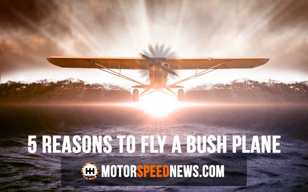 5 Reasons To Fly A Bush Plane