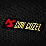 Cok-Guezel_web-1.jpg
