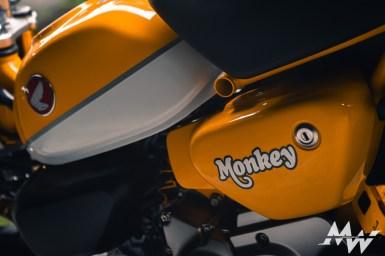 編輯試乘 Honda Monkey125 Test_細節_-15