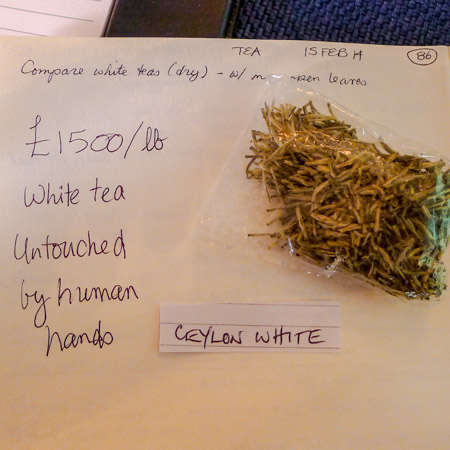 Ceylon White Tea, untouched by human hands / Jill Browne