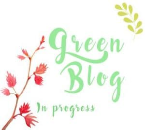 mots-d-maman-defi-green-blog-bio