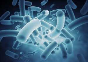 Biotech Smashed nasdaq