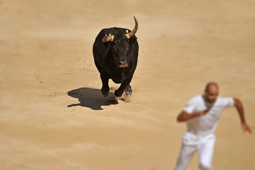 The Great Bull Market Run of 2019 and 2020 May Only Be Starting
