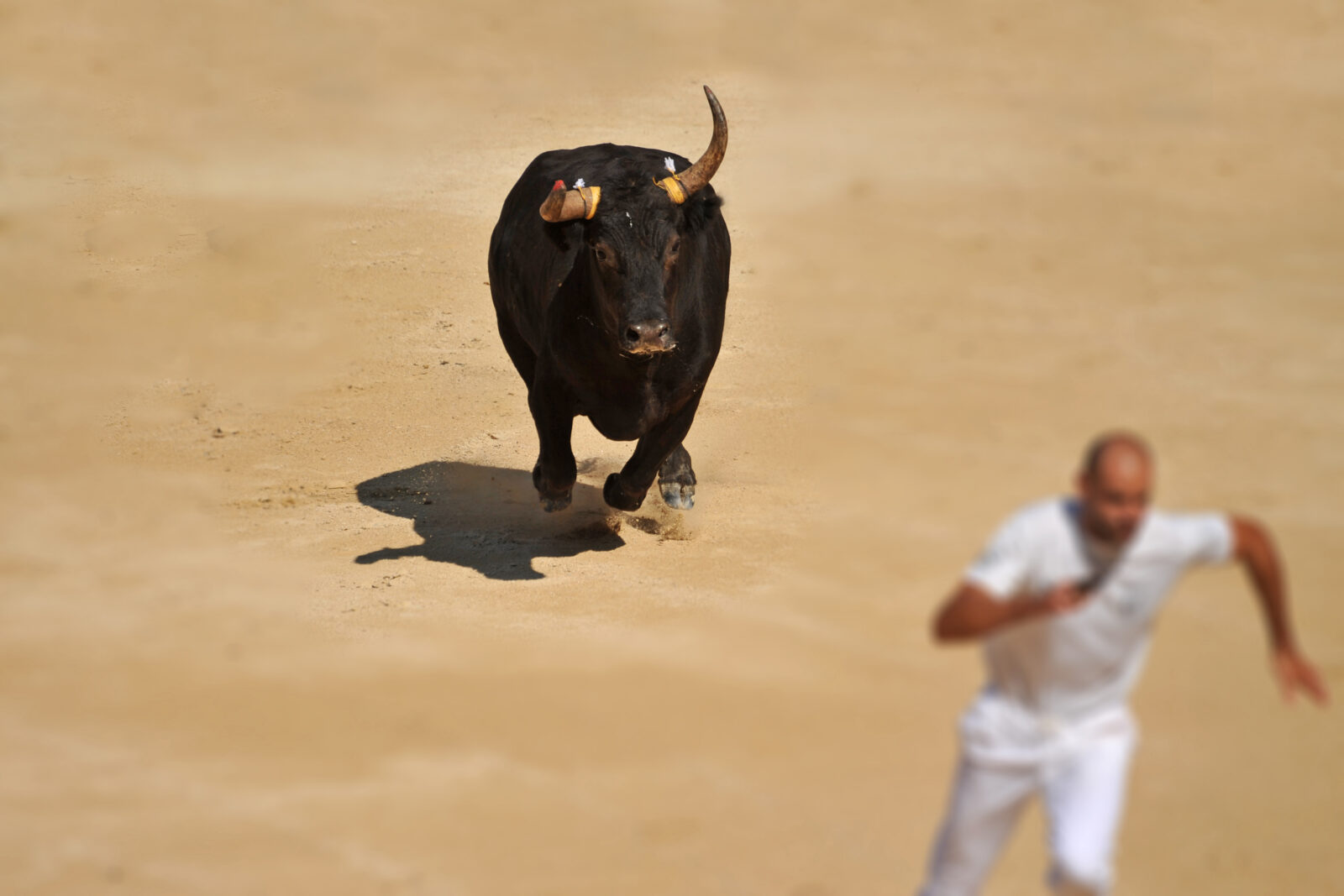 6 Monster Stock Market Predictions for the week of October 7