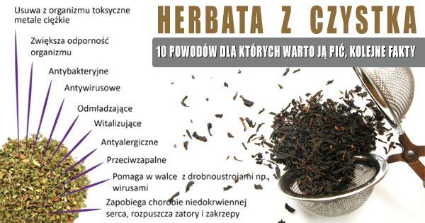herb z czystka