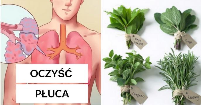 Oto 5 najlepszych ziół, które pomogą oczyścić płuca