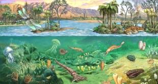 حقبة الحياة القديمة paleozoic