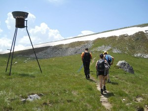 Hiking Tours on Pelister