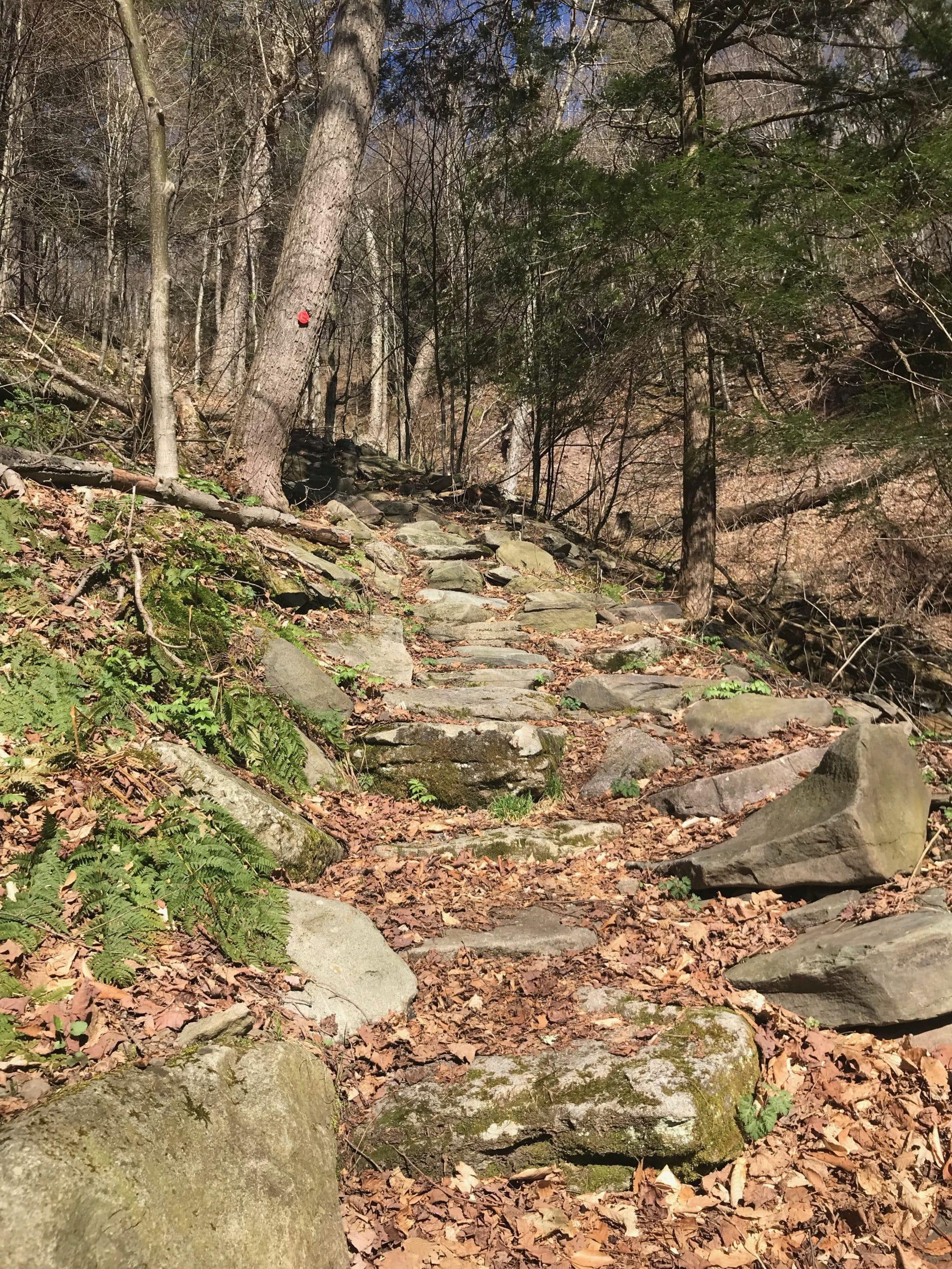 rugged Catskills hiking trail
