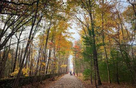 Ashokan Rail Trail, Fall 2019