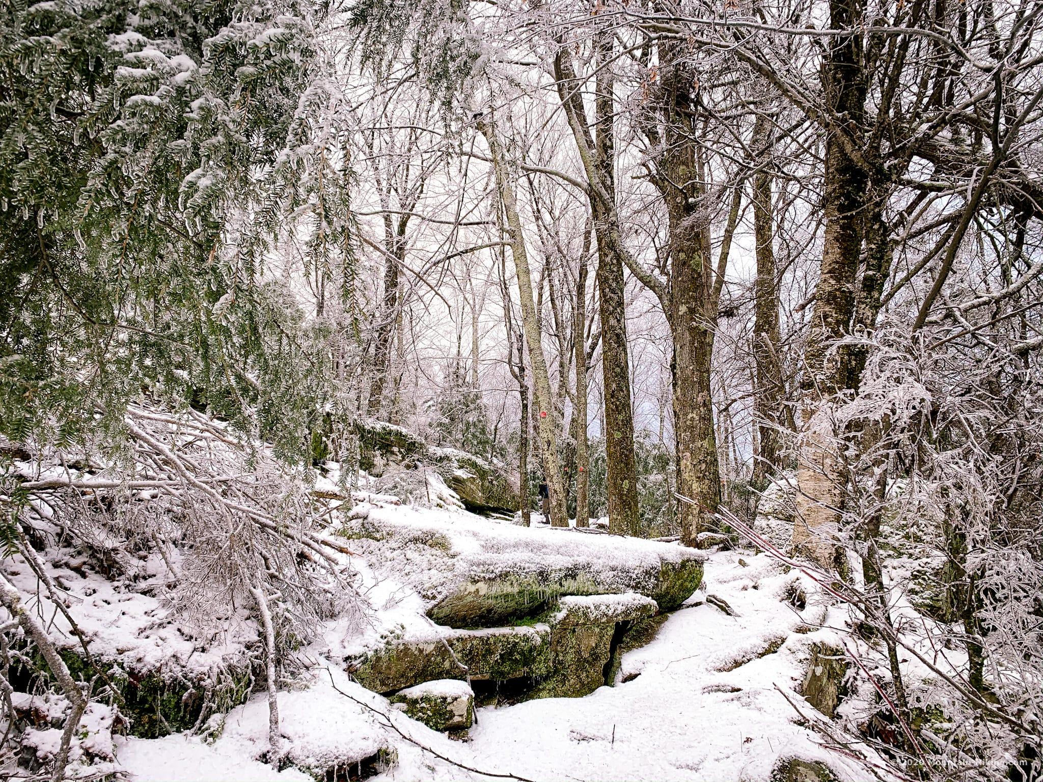 Wittenberg hiking trail