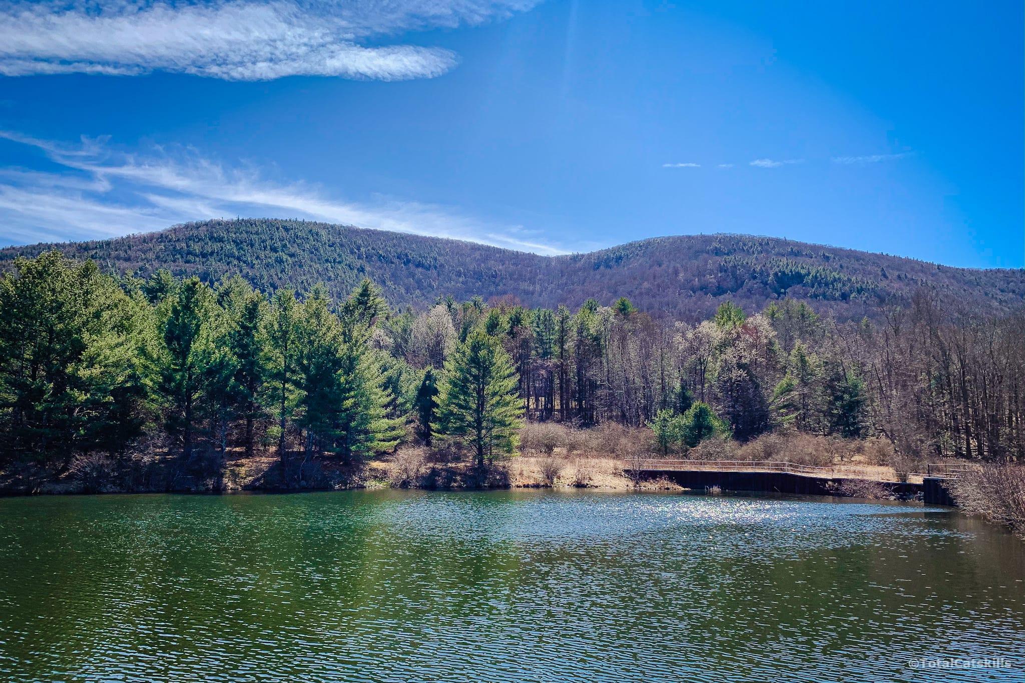 mountain, lake, trees, shoreline, catskills