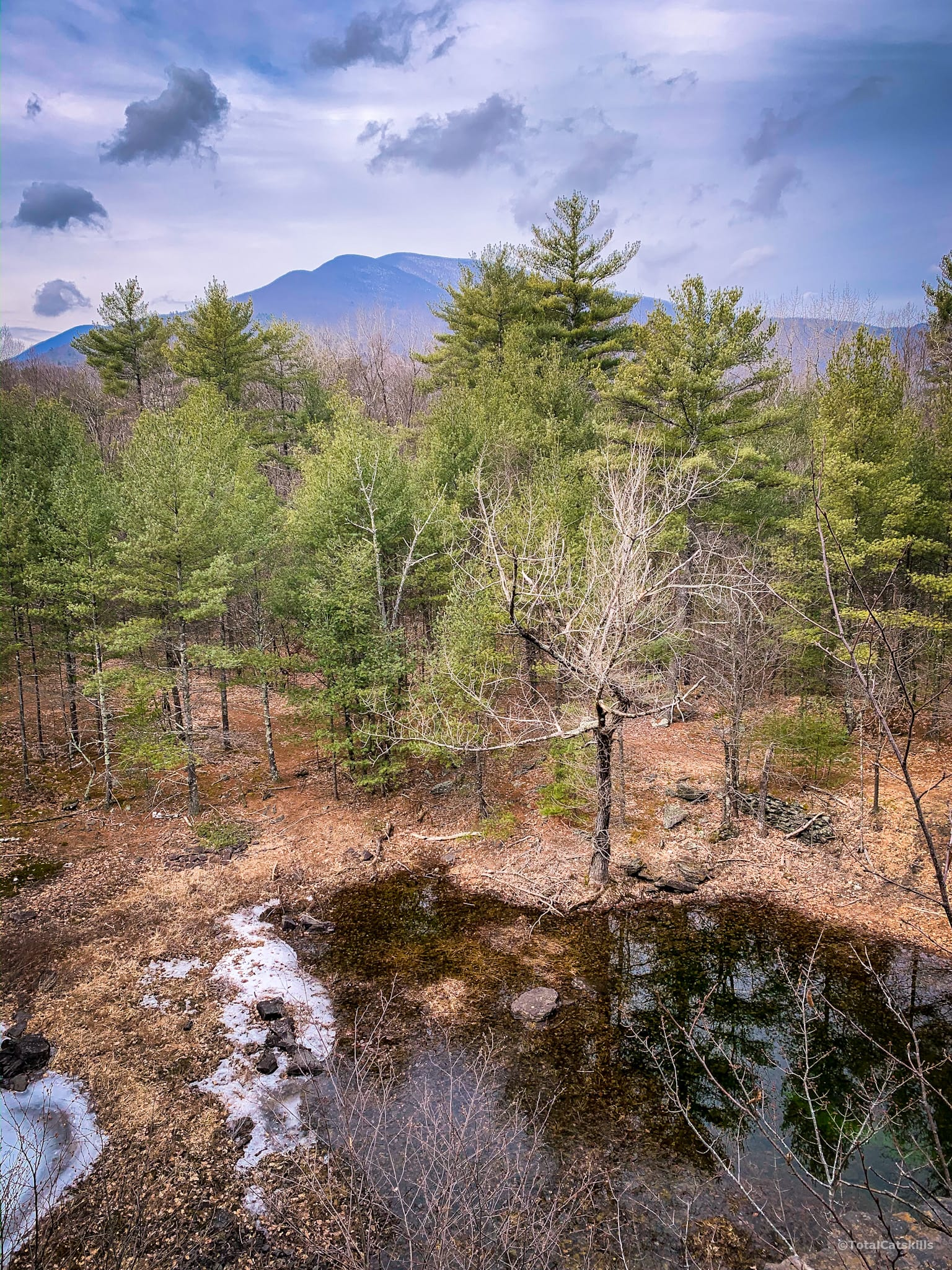 Scenic Catskills View