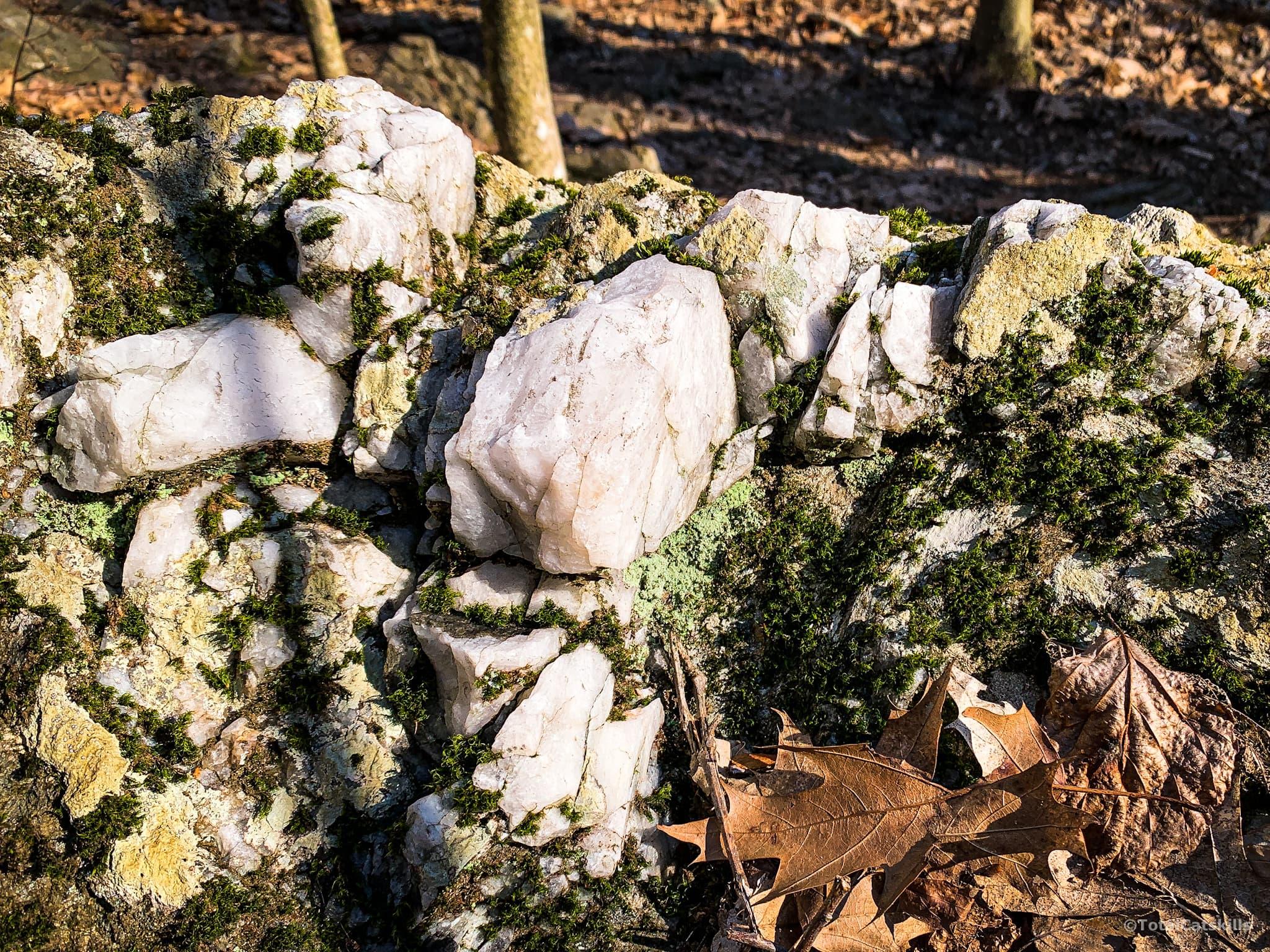 exposed white quartz