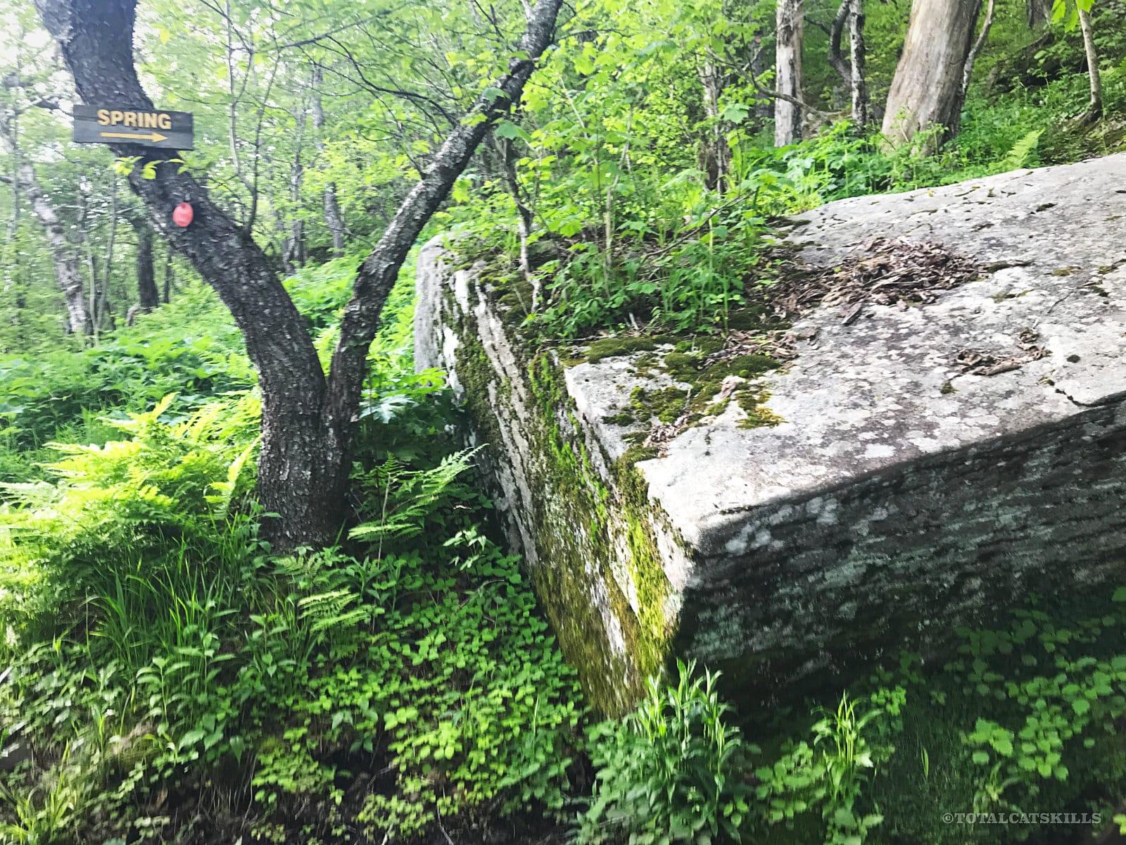 balsam lake mountain spring