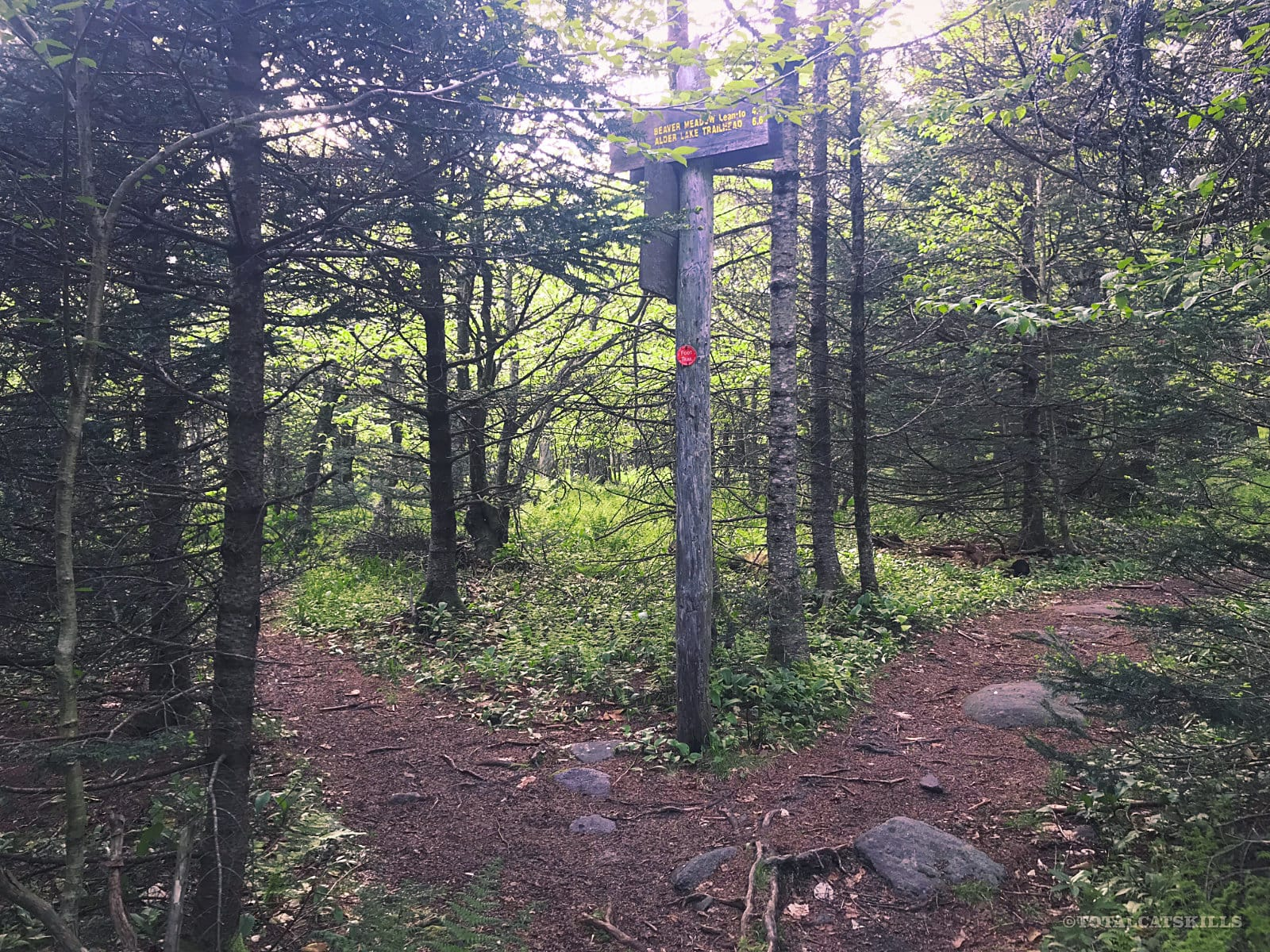 hiking trail junction