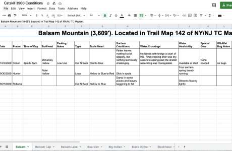 google doc screenshot of spreadsheet