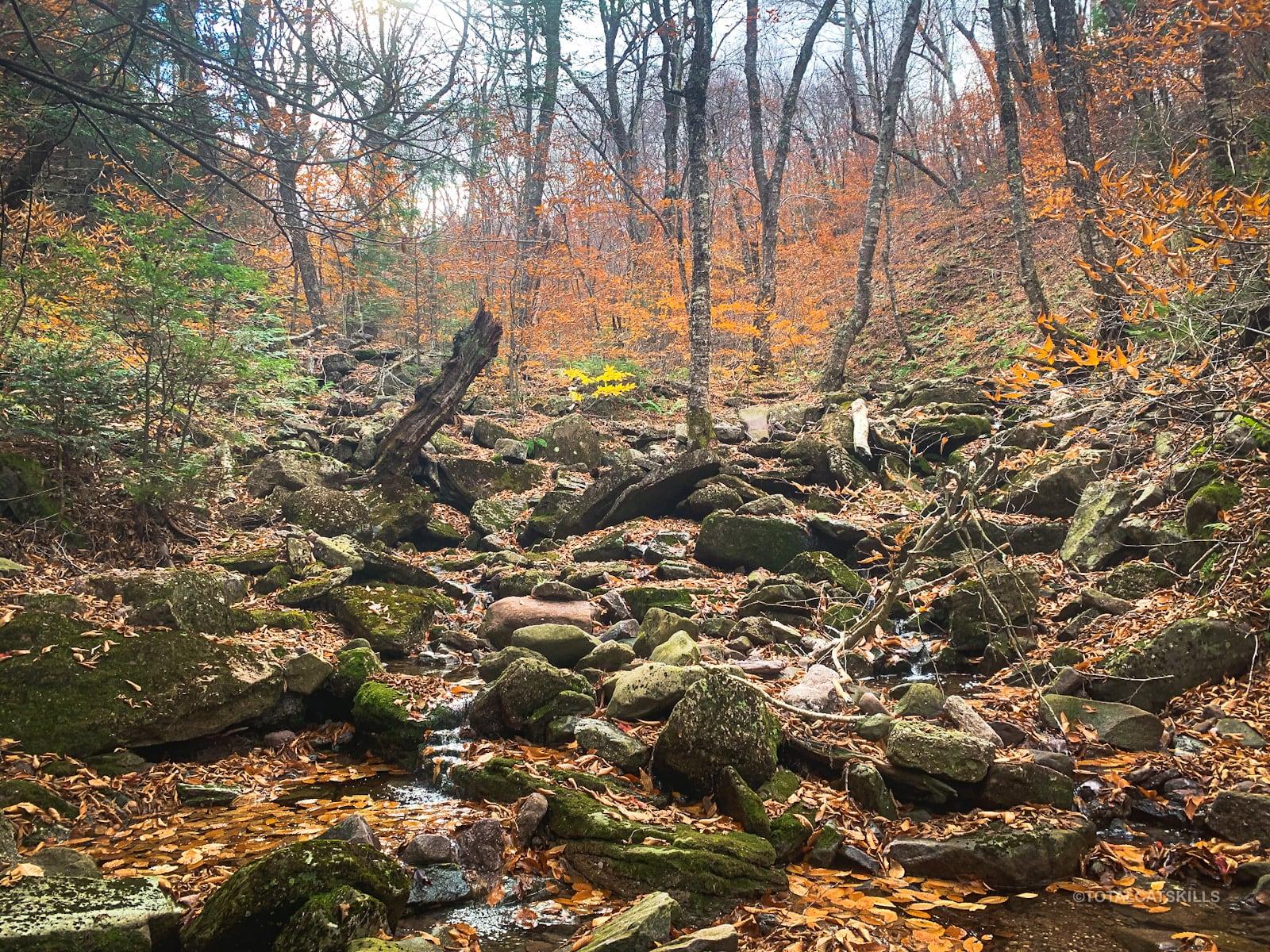 rocky wet mountain drainage