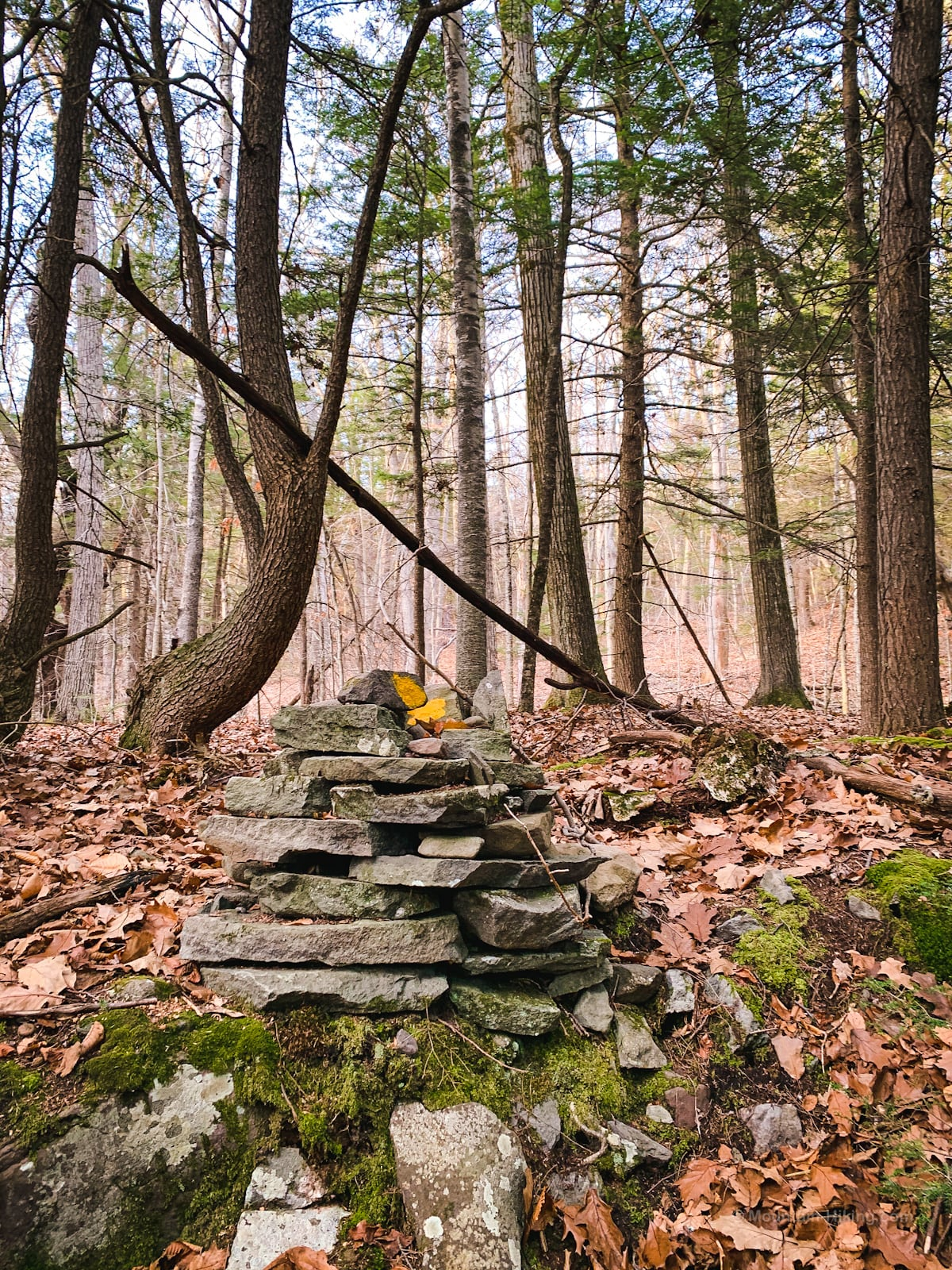 rock cairn in woods