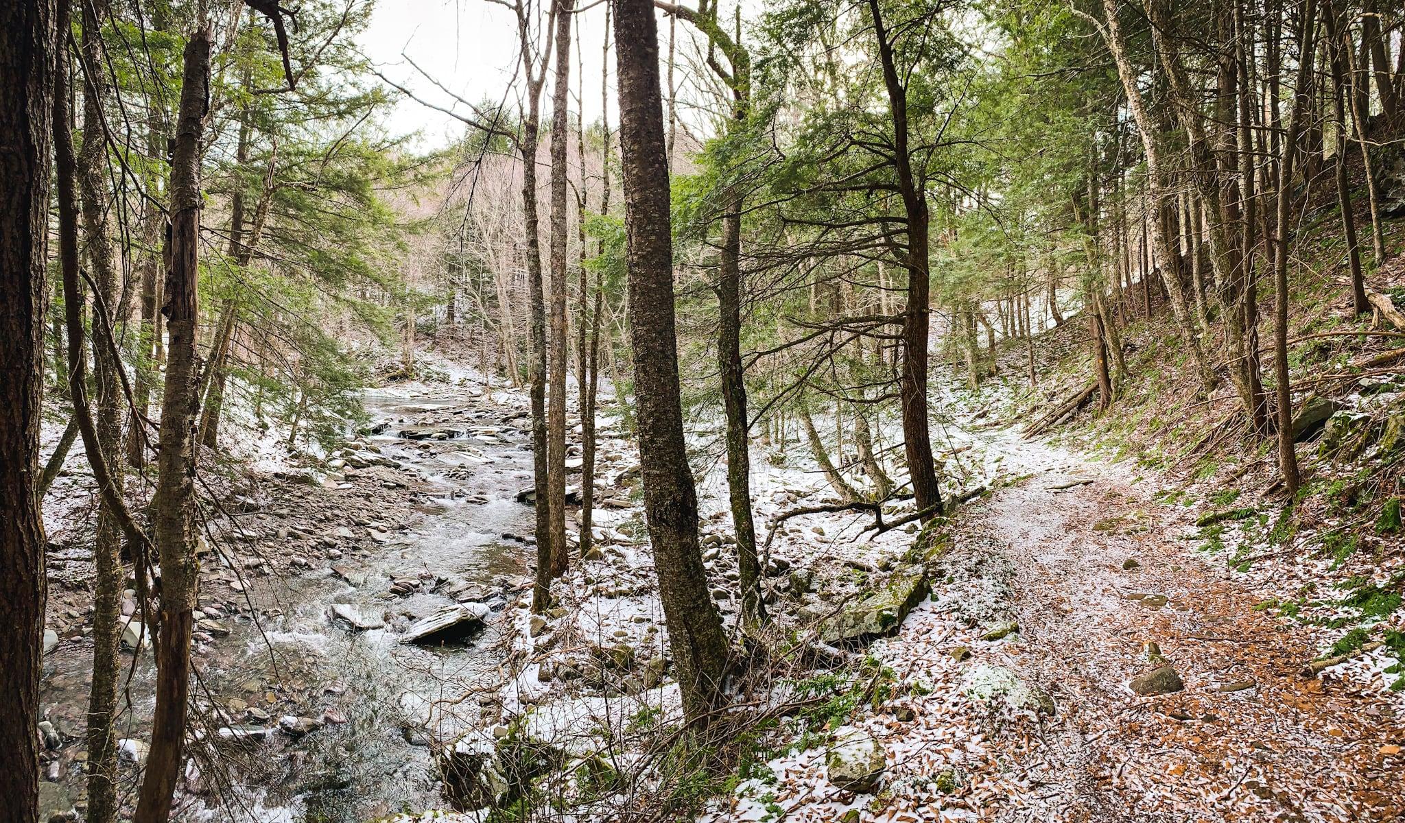 classic riparian trail