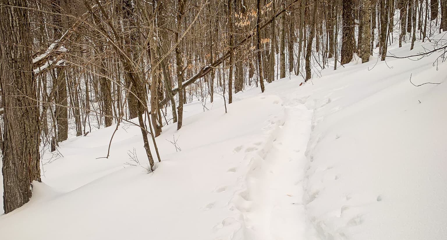 snowshoe trench in snow