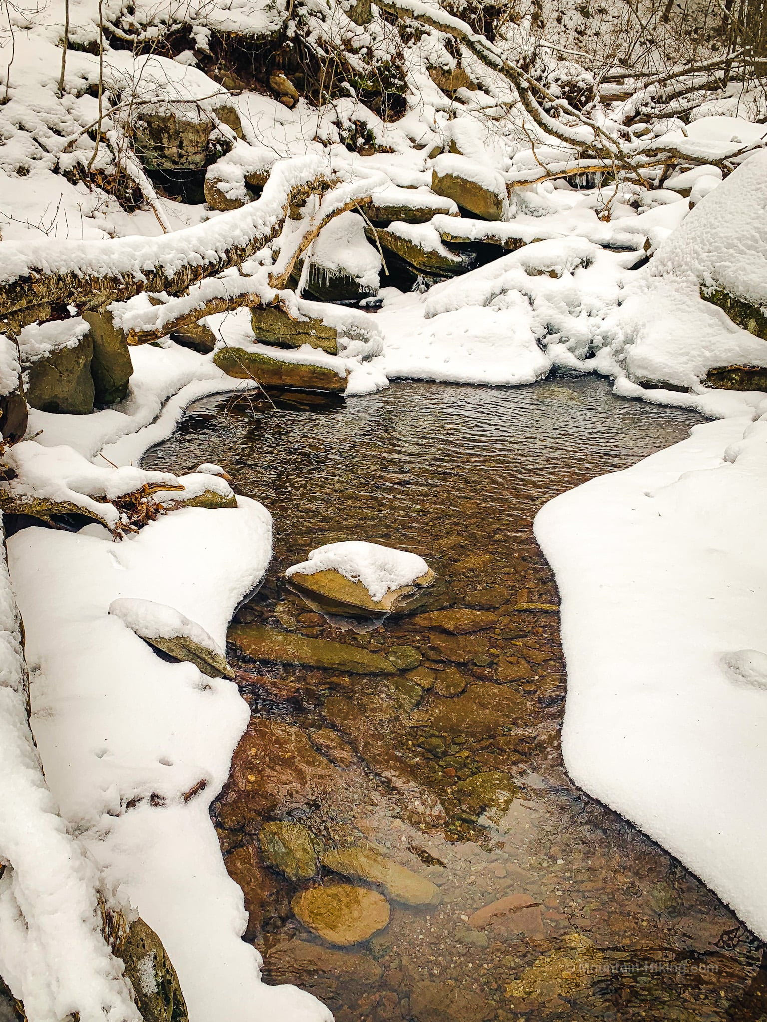 brook in snow