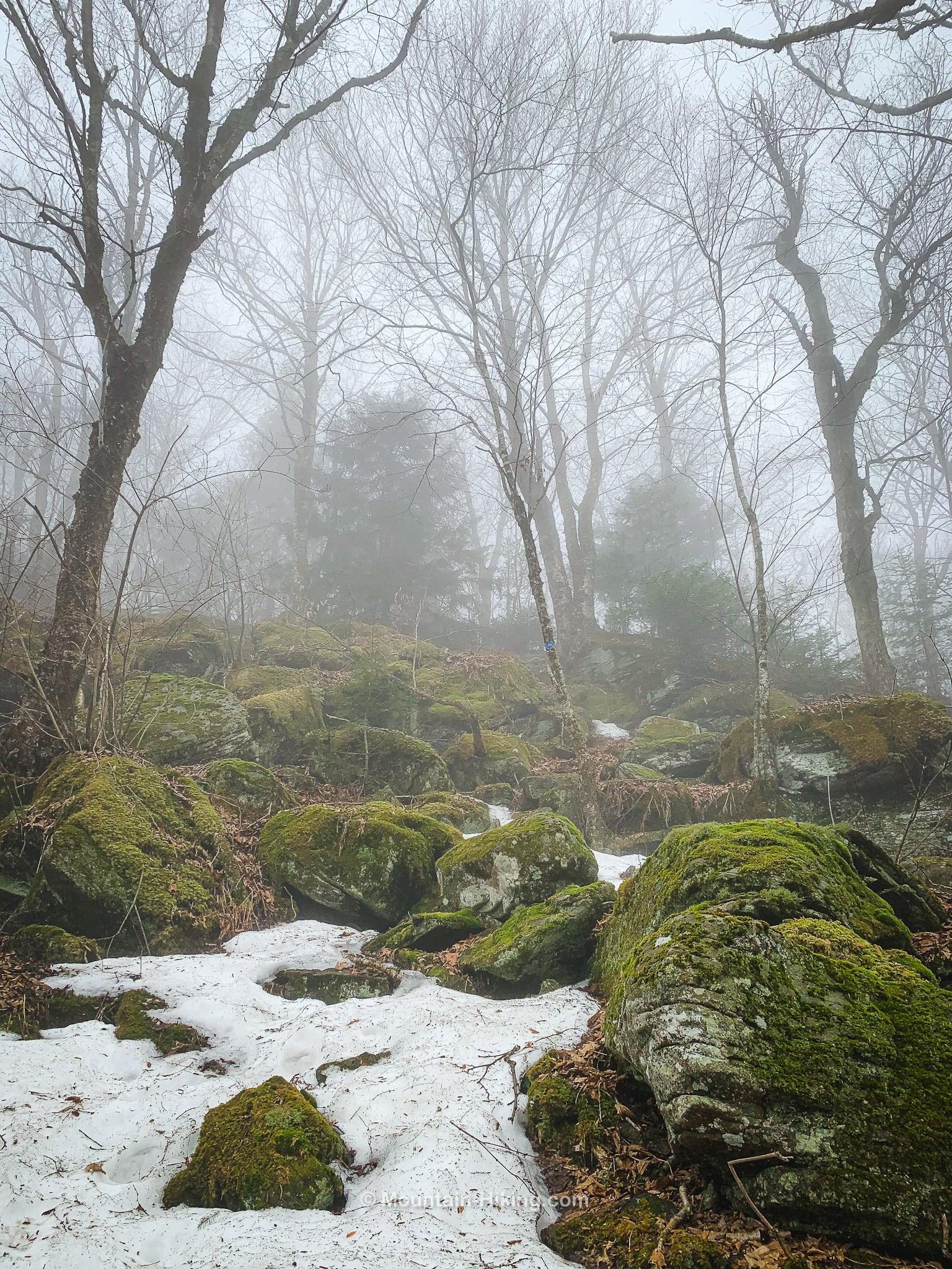 mossy boulders on hillside