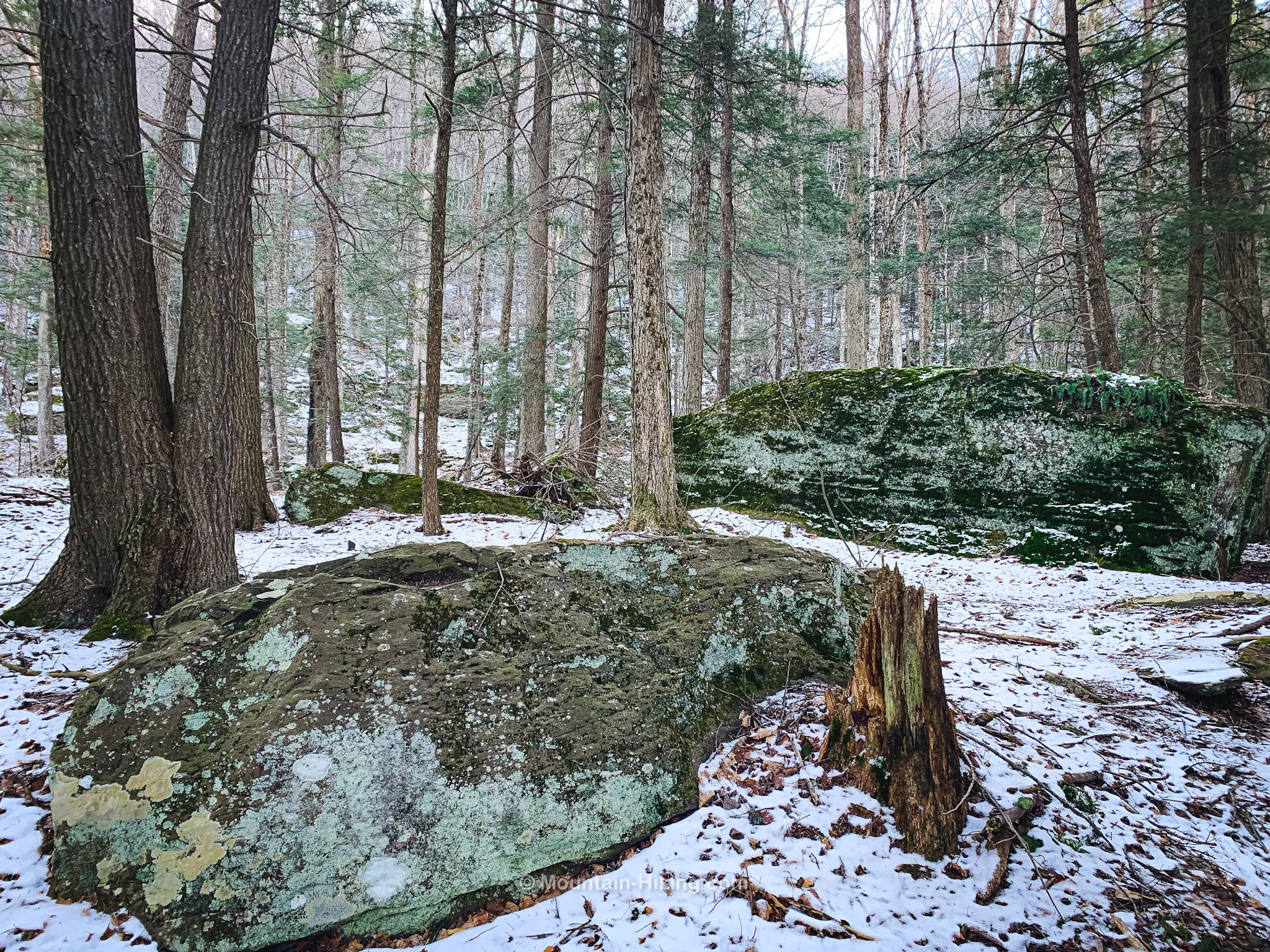 glacial erratics covered in snow