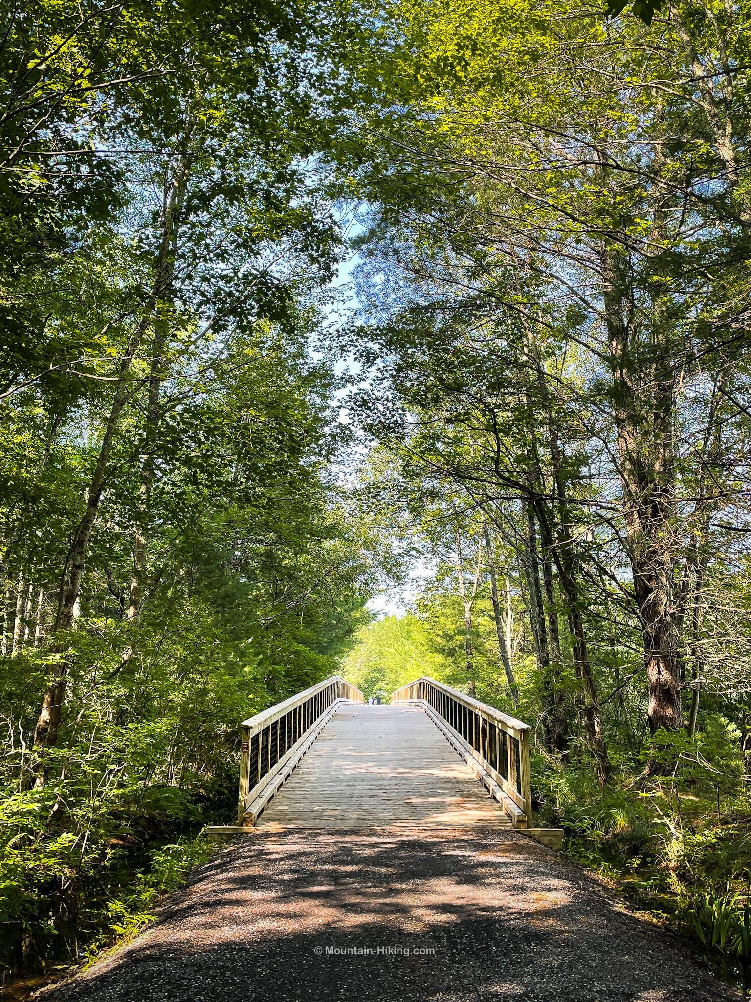 Ashokan Rail Trail footbridge in woods