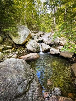 Roaring Brook