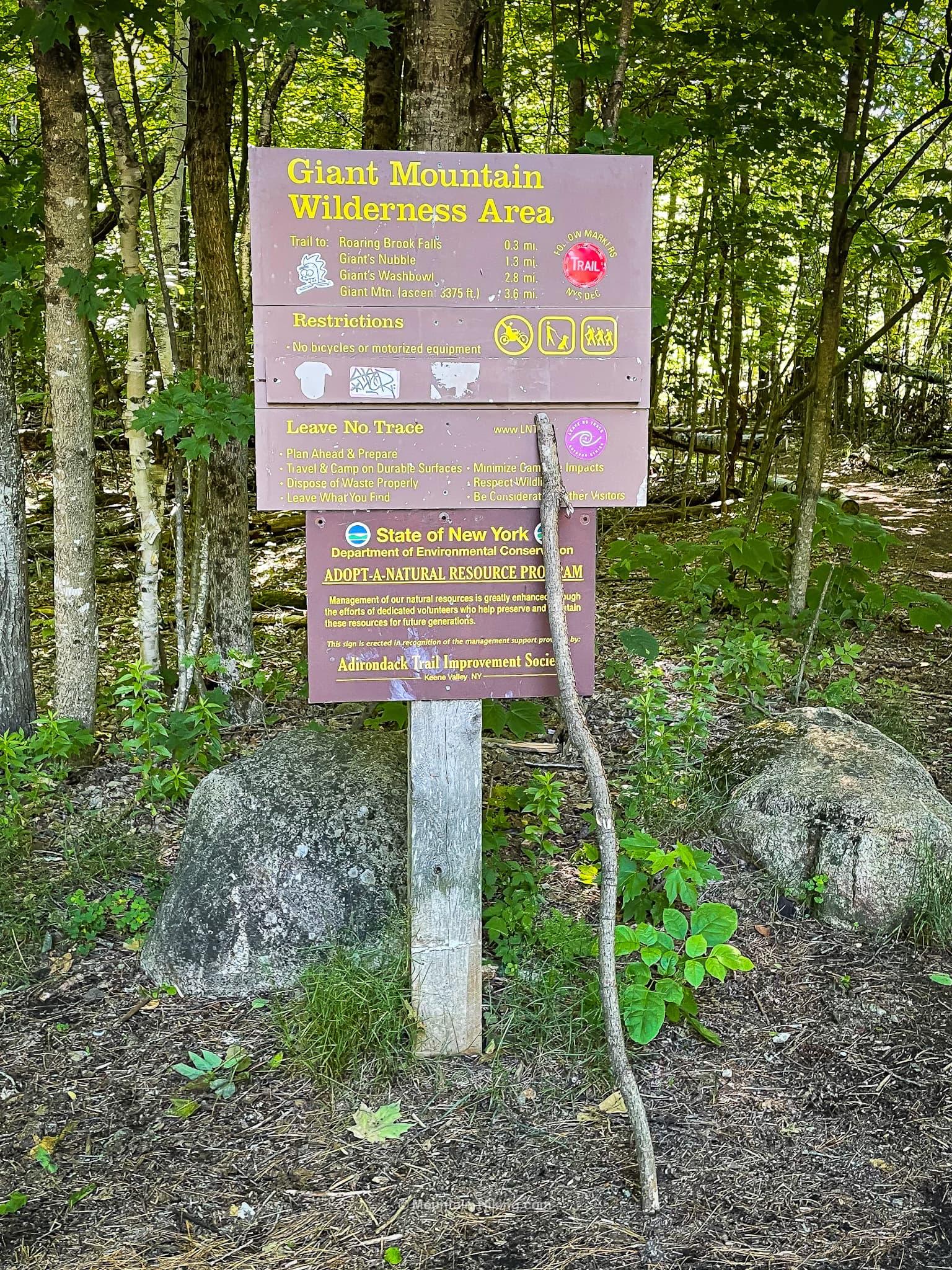 signposts in woods