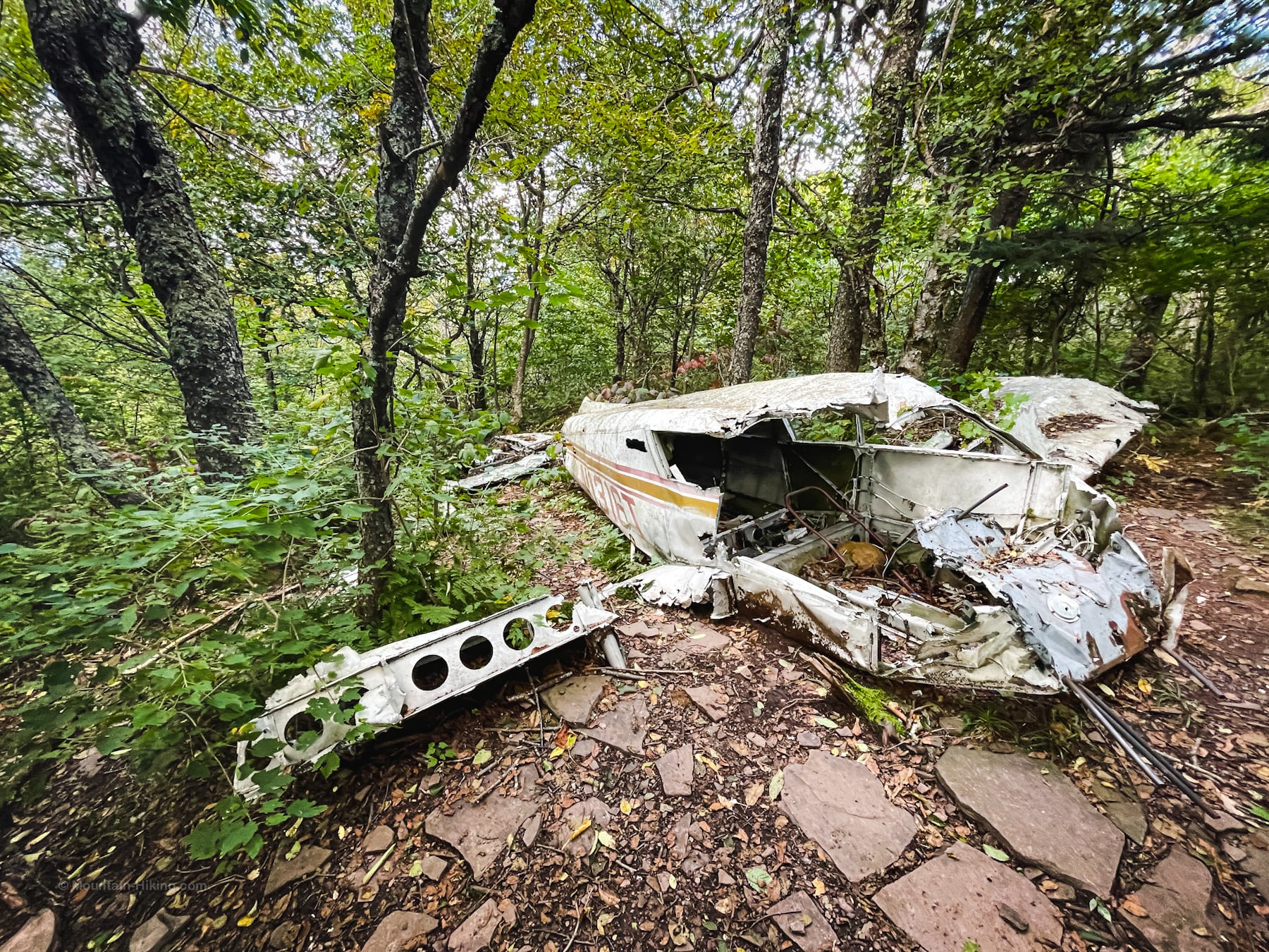 stoppel point plane crash in woods