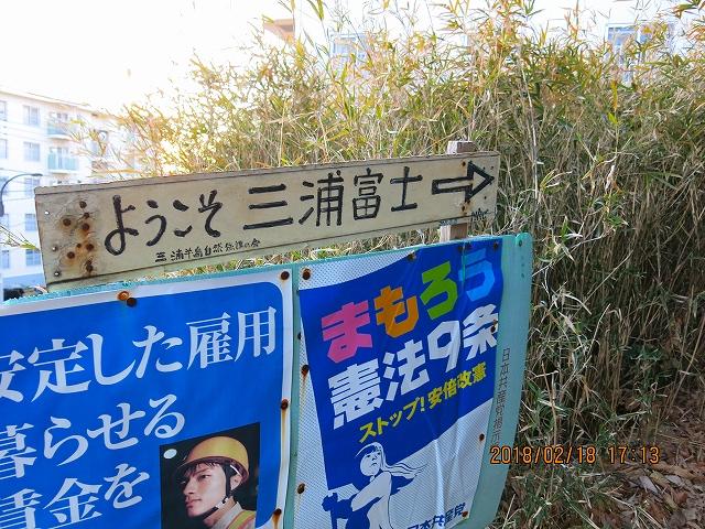 三浦半島横断トレイル攻略【迷いの森へようこそ】