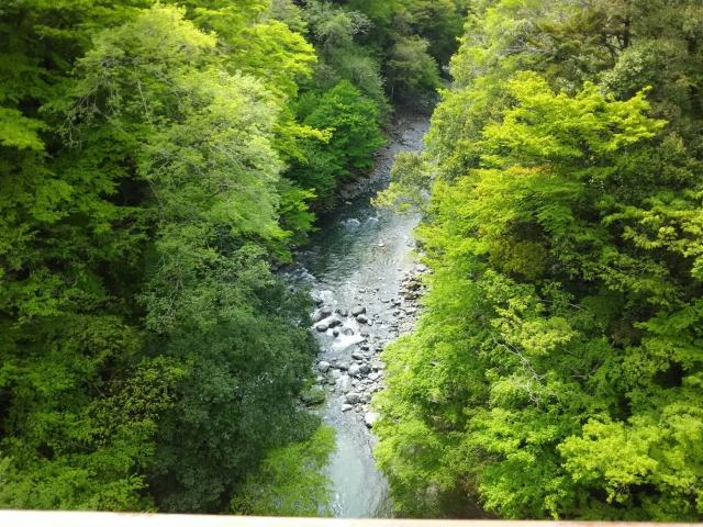 道志村で小学生女児が行方不明になったニュースを見た人に私が伝えたいこと【山岳事故】